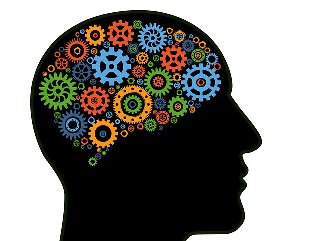 mechanika mozku
